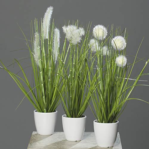 mucplants Kunstpflanze Gras im weißen Topf 3 Stück Höhe 38cm...
