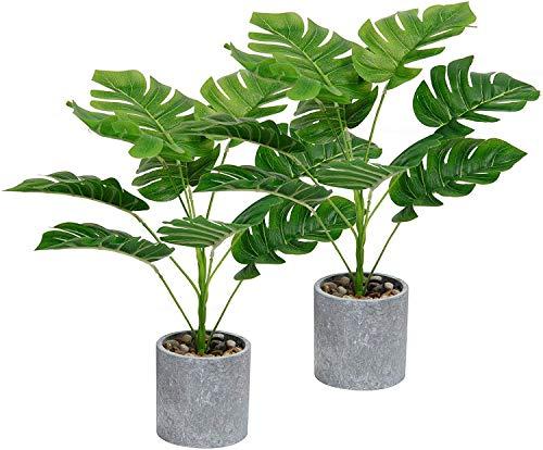 SHACOS 2 Stück Zimmerpflanze Monstera Blätter Tropische...